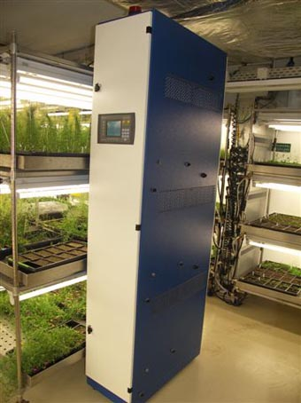 arabidopsis growing systems